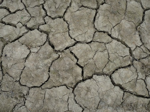 Cracked Earth Texture Design