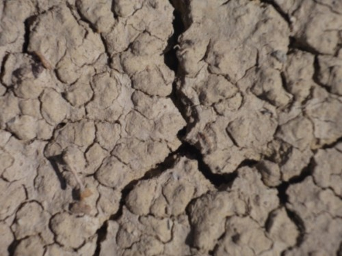 Cracked Earth by D4rkD4wn