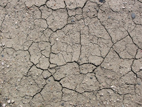 Cracked Earth by Happy Gecko