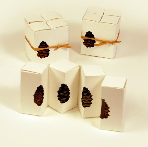 Pine Cone Package Design