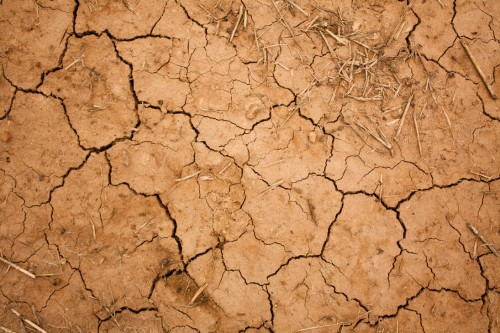 Cracked Earth Texture by CO2 Photo Stock