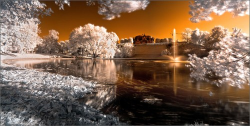 Dresden Zwinger in infrared