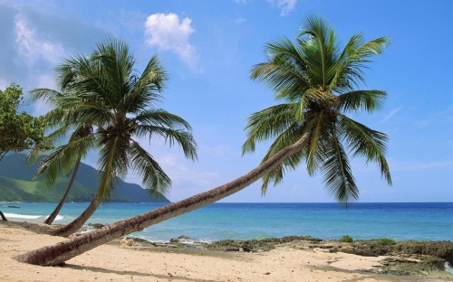 Paradise Island wallpapers