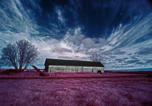 infrared something-scape