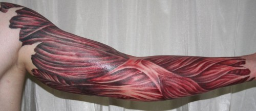 Arm with Muscle Tissue Tattoo
