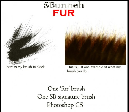 Free Fur Brush To Download