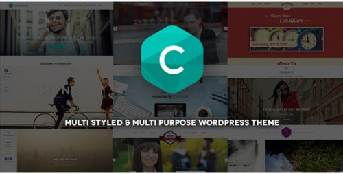 Consilium - Multi-Purpose WordPress Retro Theme