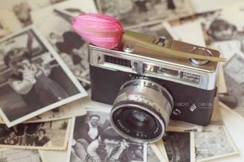 Vintage Style Still Life Pictures